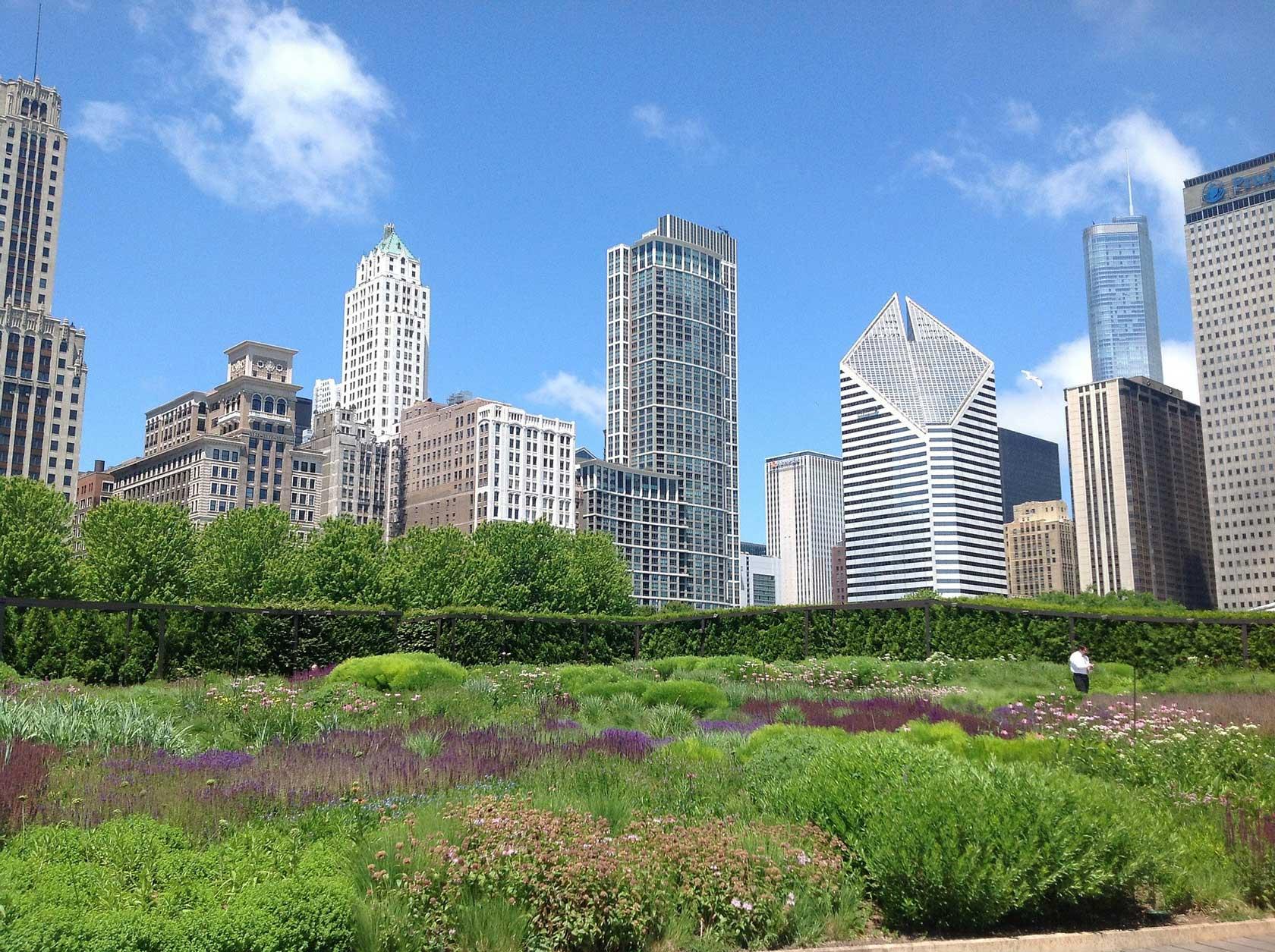 Chicago Sehenswürdigkeiten Top 10